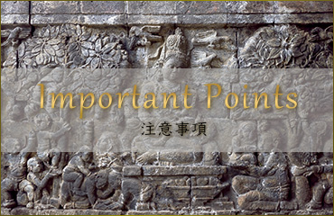 Imprtant Points 注意事項